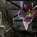 Glass Still Life #1. by Alexander Vinogradov