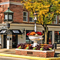 Glen Ellyn Watering Fountain by Christopher Arndt