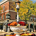 Glen Ellyn Watering Trough by Christopher Arndt