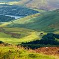 Glendalough Valley, County Wicklow by Rosanne Licciardi