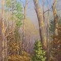 Glenmoor Woods, Sunset by Inka Zamoyska