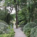 Glenveagh Castle Gardens 4305 by John Moyer