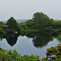 Glenwhan Gardens by Ian Baxter
