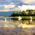 Glistening Cove At Low Tide by MaryLou England