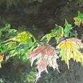 Glistening Fall by Cynthia Ann Swan