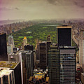 Gloomy Central Park by Martin Newman