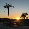 Glorious Sevillian Sunset With Palms by Georgia Mizuleva