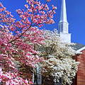 Glorious Sunday Morning In Spring by Carolyn Derstine