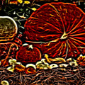 Glowing Pumpkins by Judy Vincent