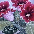Gloxinias by Karen Zuk Rosenblatt