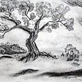 Gnarly Oak by J R Seymour