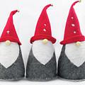 Gnomes by Bob Corson