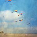 Go Fly A Kite by David Zanzinger