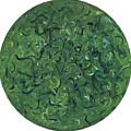 Go Green by Patty Vicknair
