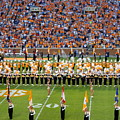 Go Vols by April Patterson