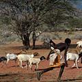 Goat Chase by Morris Keyonzo
