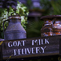 Goat Milk Delivery by Garry Gay