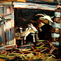 Goat Shed by Brian Simons