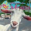 Goats Of St. Maarten- Sofie by Cindy D Chinn