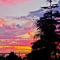 God Gracing La County by Gwyn Newcombe