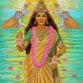 Goddess Lakshmi by Sue Halstenberg