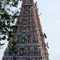 Gods Above Xi - Kapaleeshwarar Temple, Mylapore by Richard Reeve