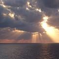 God's Creation by Melanie Latham