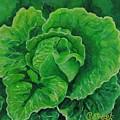 God's Kitchen Series No 5 Lettuce by Caroline Street