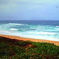 Going Coastal by Joyce Dickens