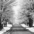 Going Home For The Holidays  by Cathy Beharriell