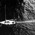 Going Under The Bridge  by Lyle Crump