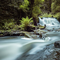 Goitstock Mill Waterfall  by Gary Turner