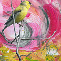 Gold Finch by Jacqueline Milner