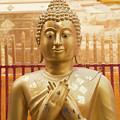 Gold Leaf Buddha by Emily M Wilson