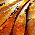 Gold Leaf by Julie Niemela