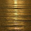 Gold Sea by Rana Agaoglu