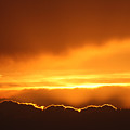 Gold Sunset by Andrea Lawrence