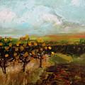 Golden Apples by Martha Dolan