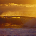 Golden Backlit Wave by Vince Cavataio - Printscapes