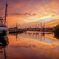 Golden Bayou 2 by Brad Boland