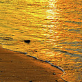 Golden Beach Sunset by Stephen Anderson