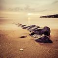Golden Beach by Thanos Tsaltas
