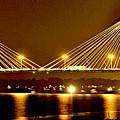 Golden Bridge by Marty Koch