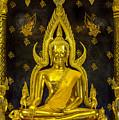 Golden Buddha  by Anek Suwannaphoom