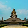 Golden Buddha by John Lillis