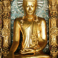 Golden Buddha by Michele Burgess
