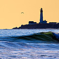 Golden California Coast - Pigeon Point Lighthouse by Mark E Tisdale