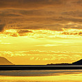 Golden by Chad Dutson