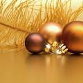Golden Christmas by Wim Lanclus