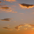 Golden Clouds by Stephanie Moore